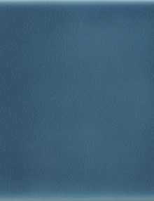 blu-navy2