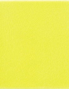 gialloginest_20x202