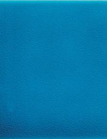macro_Azzurro-Mare2